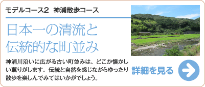神浦散歩コース